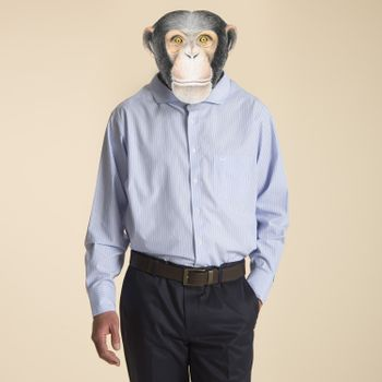 Camisa Wrinkle Free Travel