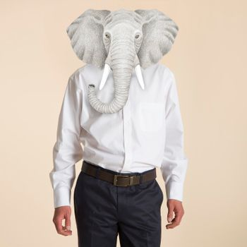 Camisa Wrinkle Free WOR Travel