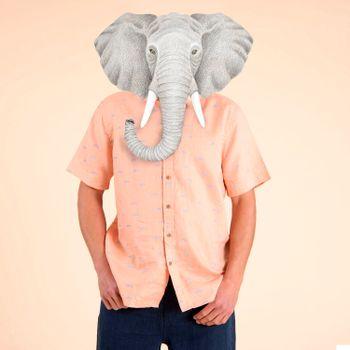 Camisa  Nature para Hombre - Fishes